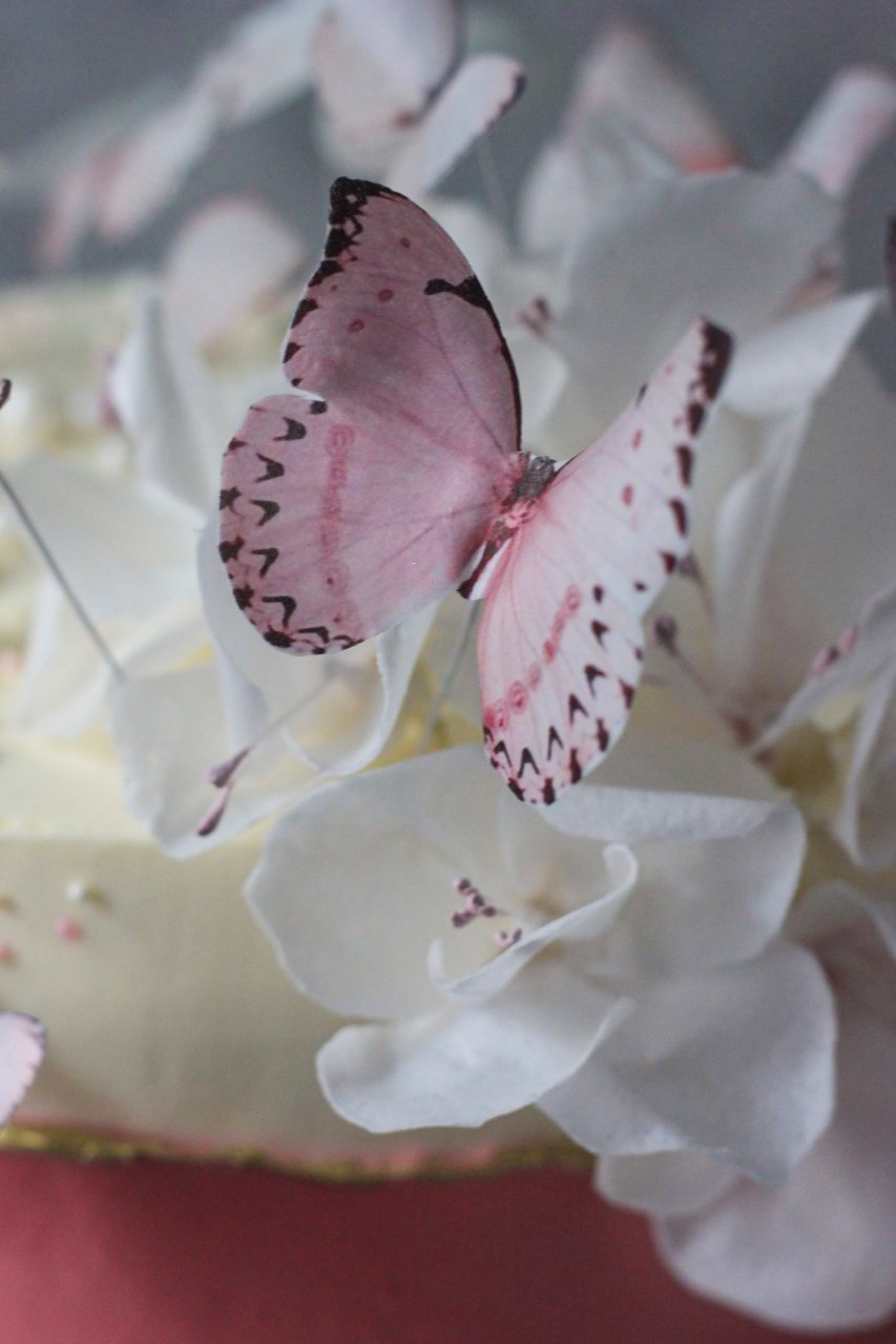 1700 р/кг  + 500р вафельные бабочки